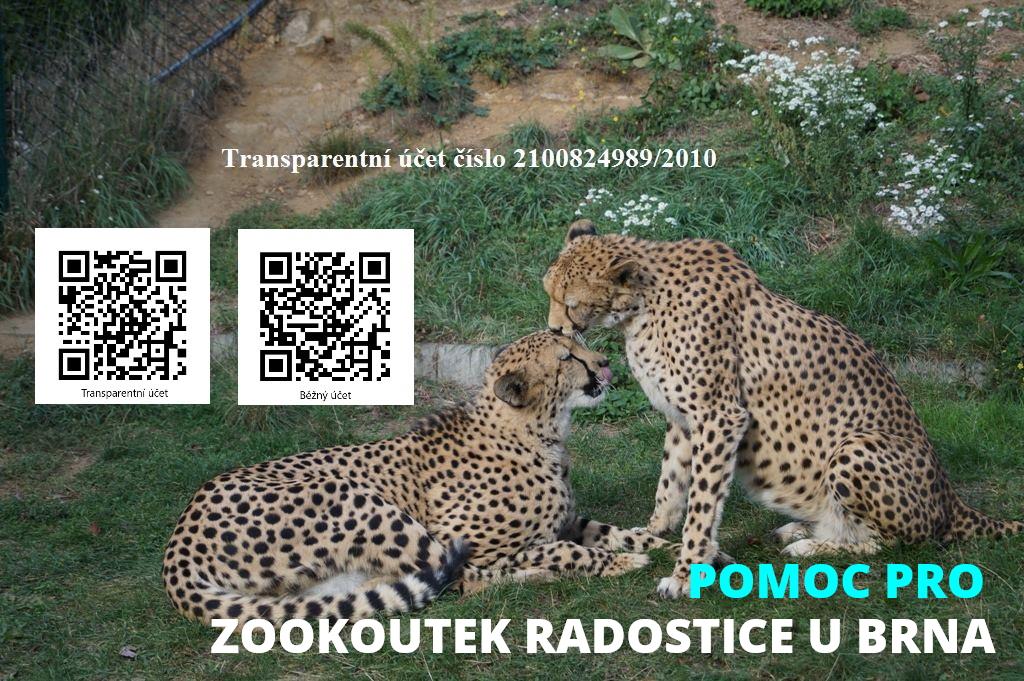 sbírka pro Zookoutek